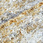GOLD-SILVER - Marble Countertops In MD